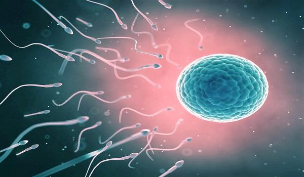 homens-tem-cada-vez-menos-espermatozoides