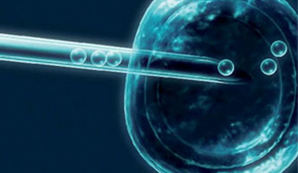 Tratamento Mini-FIV Fertilização in vitro