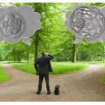 Qual melhor dia para transferir embrião: Terceiro dia (D3) ou Blastocisto (D5/D6)?